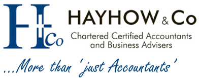Hayhow & Co. logo